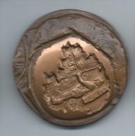 Médaille De Table/Marche Sur La Lune/ 21 Juillet 1969/Bronze/Monnaie De Paris /1970   MED15 - France