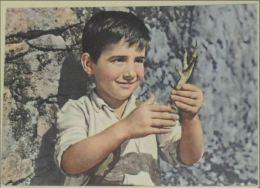 CINEMA - FILM - Marcellino Pane E Vino - Marcellino Pan Y Vino - Cinema