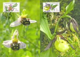 Slowakei 'Bienenragwurz U. Frauenschuh' / Slovakia 'Bee Orchid & Lady's Slipper Orchid' MK/MC 2008 - Orquideas