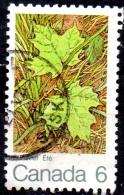 "CANADA 1971 ""The Maple Leaf In Four Seasons"" - 6c - Green Leaves (summer) FU - 1952-.... Regno Di Elizabeth II"