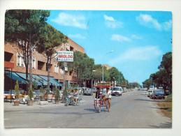 Fe1164)  Lido Di Spina - Viale Giuseppe Verdi - Ferrara
