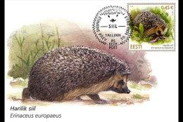 ESTONIA 2014. MAXIMUM CARD. ESTONIAN FAUNA HEDGEHOG - Roedores