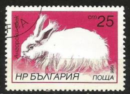 Bulgaria 1986 - Mi. 3448 O, Wild Animals, Rabbits - Bulgaria