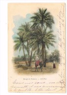 CPA - ALGERIE - Groupe De Palmiers   (198) - Oran