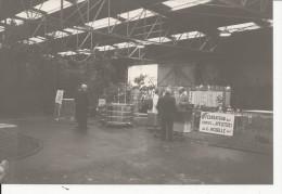 Ce Document Est Une Photo  Format 75x120  Apiculteurs De La Moselle - France