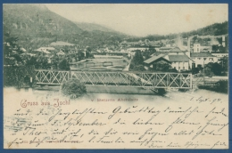 Gruß Aus Ischl Sterzens Abendsitz Ortsansicht, Gelaufen 1898 (AK363) - Bad Ischl