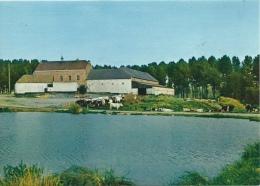 Horrues - Etang De La Ferme De L'Eclatière - Soignies