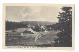 12824 - Feldberg Schwarzwald Hotel Feldberger Hof - Feldberg