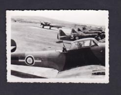Photo originale Aviation Guerre 1939 1945 Avion  � identifier alignement avions ( Arm�e de l'Air AFN Setif Jean Weill  )