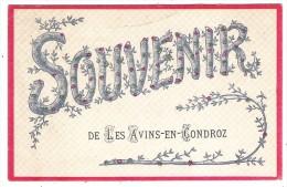 ( Pers.6 -  18-19 - ) - Souvenir de  -  Les Avins-en-Condroz