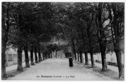 Beaugency Loiret Le Mail 1910 état Superbe - Beaugency