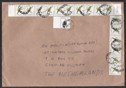 Kenya: Cover Kikuyu To Netherlands, Multifranking: 17 Stamps, Birds (traces Of Use) - Kenia (1963-...)
