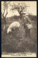Cpa Du 24  - Ain Périgord - Lo Recolto De Lo Trufflo -- Lou Depart - La Récolte De La Truffe , Le Départ     AA18 - Francia