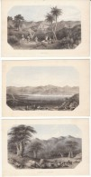 View Of The Holy Land Collection Of Small Prints, Jerusalem, Map Of Palestine, C1890s Vintage Prints - Lithographies