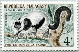 N° Yvert 358 - Timbre De Madagascar (1961) - MNH - Lemur Varius (JS) - Madagaskar (1960-...)