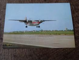 Percival Pembroke - Aviation