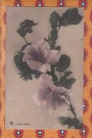 1 Cpa Fleurs - Fleurs