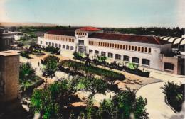 España--Valencia--1955--Algemesi--Instituto Laboral---Fechador--Algemesi, A Paris, Francia - Valencia