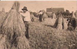 LA NORMANDIE PITTORESQUE 5193 LA RECOLTE DU BLE 1939 - Landbouw