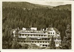 """CP De CRANS S/SIERRE """" Savoy Et Alpina Hotel """" - VS Valais"""
