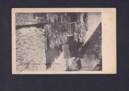 Vallee d' Andorre - Sechage du tabac ( Ed. M.P. 482 cachet libraire Saffroy Paris )