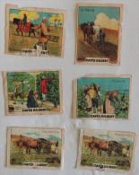 Lot De 5 Images Cafés GILBERT: Série XII (n°2, 3, 9, 10 Et 11) : Mois De L´année  -  Papier Fin - Tea & Coffee Manufacturers