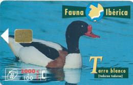 "Télécarte  Télefonica "" FAUNA IBERICA"" Tarro Blanco 2000+100PTA  Privée  Vide  Et TTB    N° Lot N05454836*** - España"