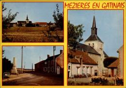 45 - MEZIERES-EN-GATINAIS - France