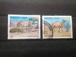 Burkina Faso - Serie Huisdieren 2010 Very Rare! - Burkina Faso (1984-...)