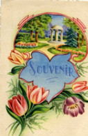 62 Souvenir De MARLES Les MINES Couleur - France
