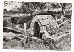 SACQUENAY--La Montolle,Fontaine Romane (XIII°)-église 2° Plan-,cpsm 15 X 10 N°1 éd Combier-pas Très Courante - Autres Communes