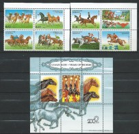 TAJIKISTAN . 2002. EQUESTRIAN SPORTS. HIPICA And Year Of Horse.MNH - Tadjikistan