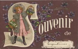 Erquelinnes  -   Souvenir De ...1910  Naar  Roisin - Erquelinnes