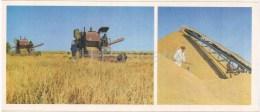 Rice Harvesting - Harvester - Karakalpakstan - 1974 - Uzbekistan USSR - Unused - Uzbekistán