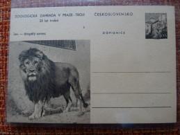 Czechoslovakia Pws 1960 Mi. P 152-5 Zoo Prague Lion Lev Entier Ganzsache Postal Stationery Card Scarce A 24,50 Euro - Timbres