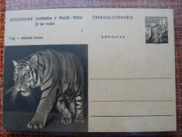 Czechoslovakia Pws 1960 Mi. P 152-7 Zoo Prague Tiger Sibirian Entier Ganzsache Postal Stationery Card Scarce A 24,50 Eur - Timbres
