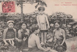TONKIN - HANOI - LE REPAS AUX CHAMPS - TRES BELLE CARTE - ANIMEE - 2 SCANNS -  TOP !!! - Vietnam