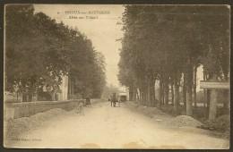 BRIOUX Sur BOUTONNE Allée Des Tilleuls (Besson) Deux Sèvres (79) - Brioux Sur Boutonne