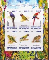 Birds / Parrots - Burundi  - 2011 - M/S Of 6 MNH** - Private / Local Issue  - Imperforato - Papegaaien, Parkieten