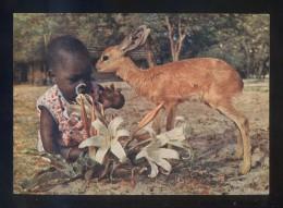 *Ambomalla Lounais-Afrikassa* Sin Datos Editor. Circulada 1968. - Postales