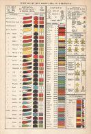 A2949 Distintivi Del R. Esercito - Stampa Antica Del 1910 - Cromolitografia - Prints & Engravings