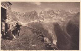 Cp , 74 , CHAMONIX , Le Massif Du Mont-Blanc Vu Du Sommet Du Brévent - Chamonix-Mont-Blanc