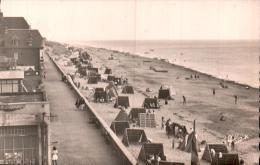 50 COUTAINVILLE PLAGE LES PAILLOTES CPSM CIRCULEE 1951 - Autres Communes