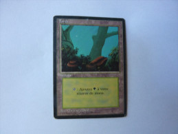 Magic The Gathering Terrain Forêt - Group Games, Parlour Games