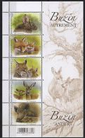 Belgie 2014 Buzin Animals   Y.T. 4379/4383 OCB BL 214 POSTPRIJS !!!   ** - Blocks & Sheetlets 1962-....