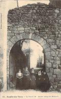 81 - Anglès-sur-Tarn - Le Portail Bas, Dernier Vestige Des Remparts - Angles