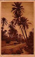 Afrique Du Nord     76    Dans L'oasis - Cartes Postales
