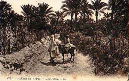 Afrique Du Nord     104    Dans L'oasis - Cartes Postales