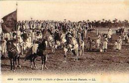Afrique Du Nord     111     Cheiks Et Goums à La Grande Fantasia - Cartes Postales