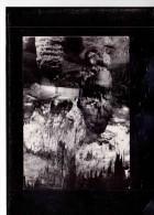 9035   -   POSTOJNSKA  JAMA     /   Circulated - Joegoslavië